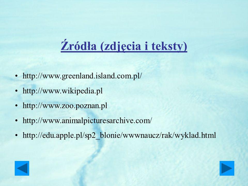 Źródła (zdjęcia i teksty) http://www.greenland.island.com.pl/ http://www.wikipedia.pl http://www.zoo.poznan.pl http://www.animalpicturesarchive.com/ h