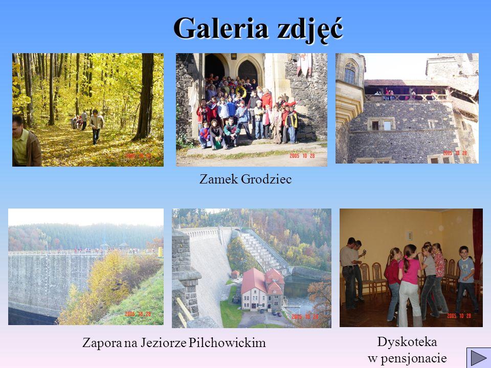Galeria zdjęć Zamek Grodziec Zapora na Jeziorze Pilchowickim Dyskoteka w pensjonacie