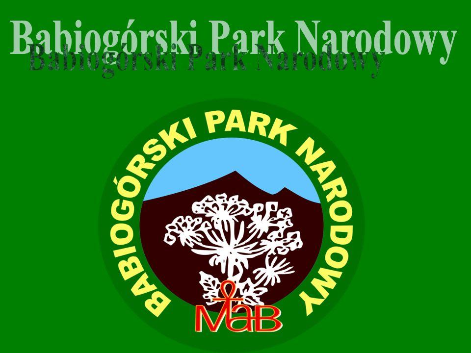 Babiogórski Park Narodowy znajduje się w południowej Polsce.