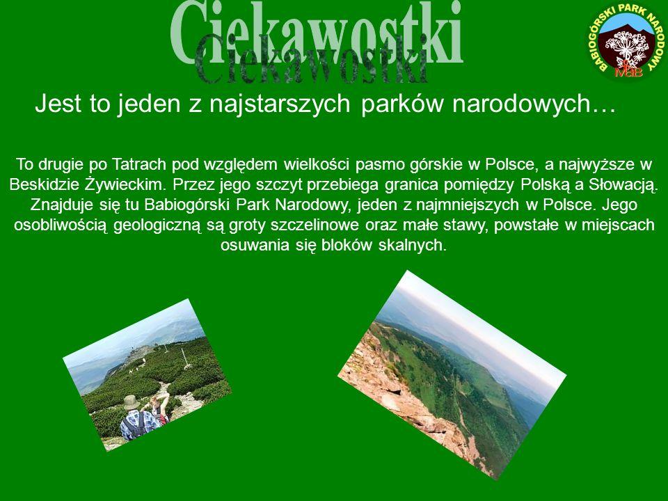 Jest to jeden z najstarszych parków narodowych… To drugie po Tatrach pod względem wielkości pasmo górskie w Polsce, a najwyższe w Beskidzie Żywieckim.