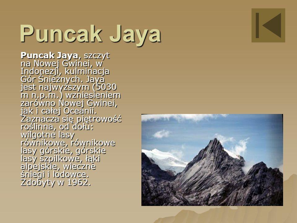 Puncak Jaya Puncak Jaya, szczyt na Nowej Gwinei, w Indonezji, kulminacja Gór Śnieżnych.