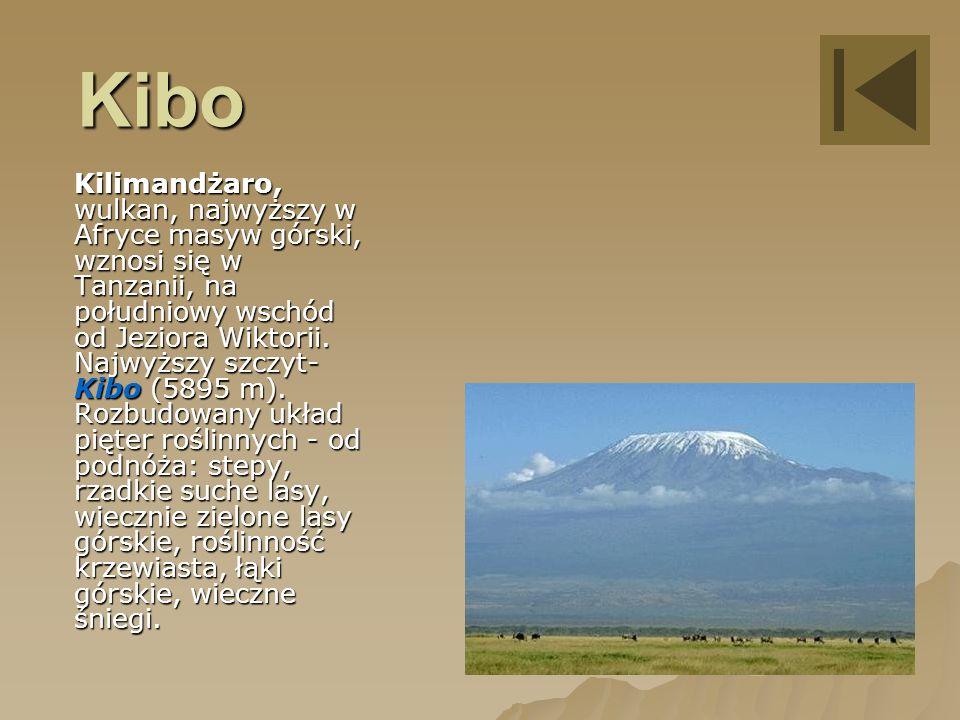Kibo Kilimandżaro, wulkan, najwyższy w Afryce masyw górski, wznosi się w Tanzanii, na południowy wschód od Jeziora Wiktorii.