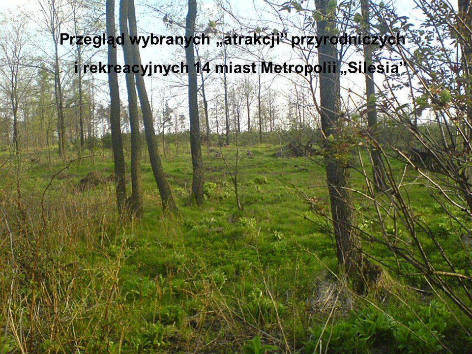 Przegląd wybranych atrakcji przyrodniczych i rekreacyjnych 14 miast Metropolii Silesia