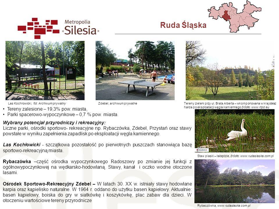 Ruda Śląska Tereny zalesione – 19,3% pow. miasta, Parki spacerowo-wypoczynkowe – 0,7 % pow. miasta. Wybrany potencjał przyrodniczy i rekreacyjny: Licz