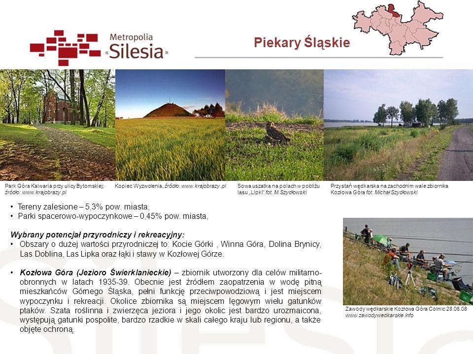 Piekary Śląskie Tereny zalesione – 5,3% pow. miasta, Parki spacerowo-wypoczynkowe – 0,45% pow. miasta, Wybrany potencjał przyrodniczy i rekreacyjny: O