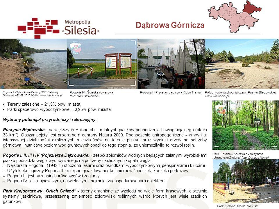 Dąbrowa Górnicza Tereny zalesione – 21,5% pow. miasta, Parki spacerowo-wypoczynkowe – 0,95% pow. miasta. Wybrany potencjał przyrodniczy i rekreacyjny: