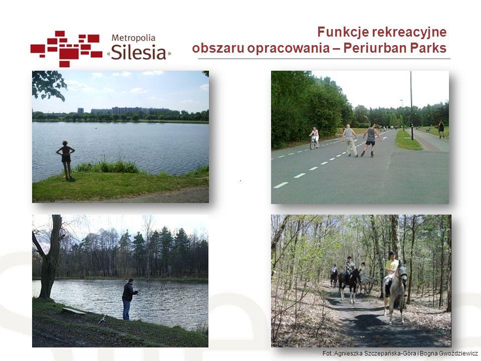 Sosnowiec Tereny zalesione – 16,8% pow.miasta, Parki spacerowo-wypoczynkowe – 2,3% pow.