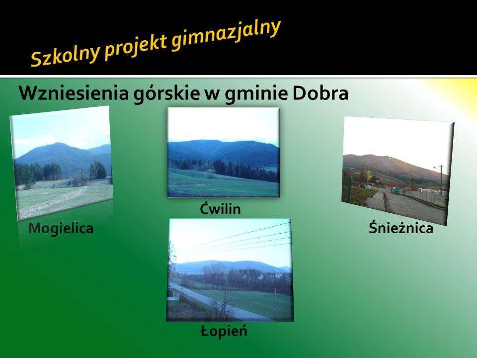 Wzniesienia górskie w gminie Dobra Ćwilin Mogielica Śnieżnica Łopień