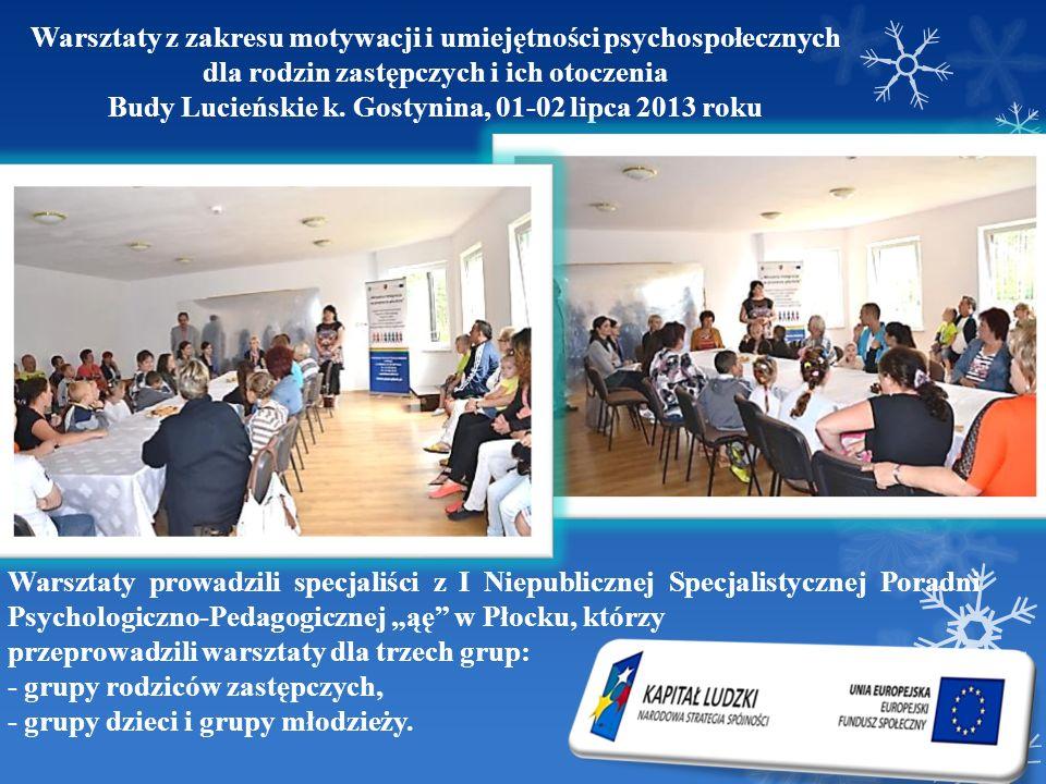Warsztaty z zakresu motywacji i umiejętności psychospołecznych dla rodzin zastępczych i ich otoczenia Budy Lucieńskie k. Gostynina, 01-02 lipca 2013 r