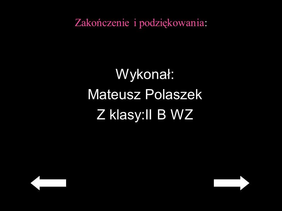 Zakończenie i podziękowania: Wykonał: Mateusz Polaszek Z klasy:II B WZ