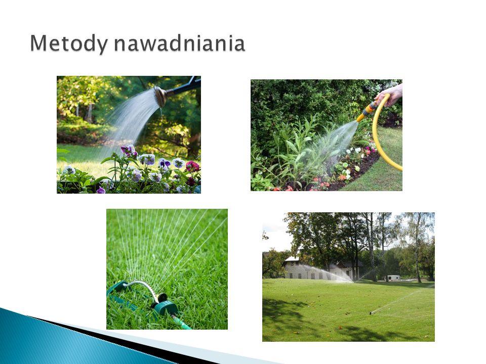 Zraszanie (deszczowanie) – imituje naturalny opad deszczu Nawadnianie kropelkowe – polega na dostarczaniu małych, równomiernych ilości wody wprost do środowiska korzeniowego roślin