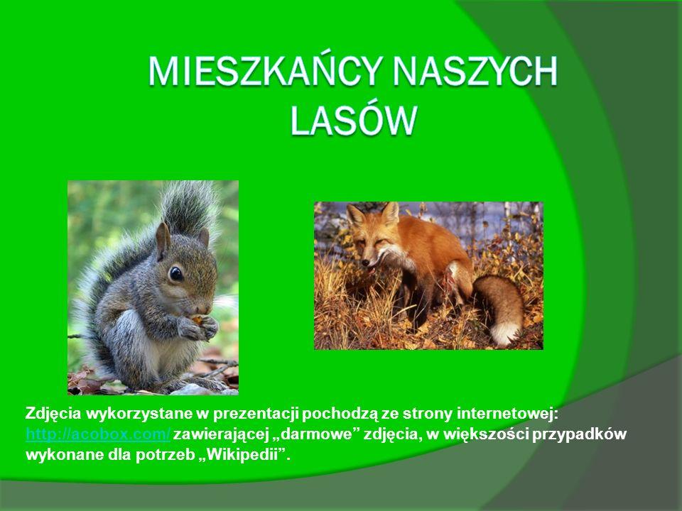 Zdjęcia wykorzystane w prezentacji pochodzą ze strony internetowej: http://acobox.com/ zawierającej darmowe zdjęcia, w większości przypadków wykonane