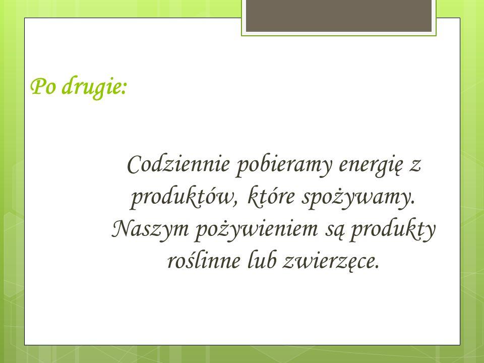 Codziennie pobieramy energię z produktów, które spożywamy. Naszym pożywieniem są produkty roślinne lub zwierzęce. Po drugie: