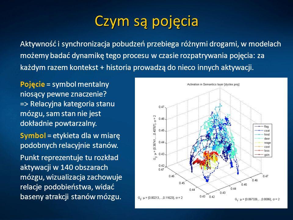 Czym są pojęcia Aktywność i synchronizacja pobudzeń przebiega różnymi drogami, w modelach możemy badać dynamikę tego procesu w czasie rozpatrywania po