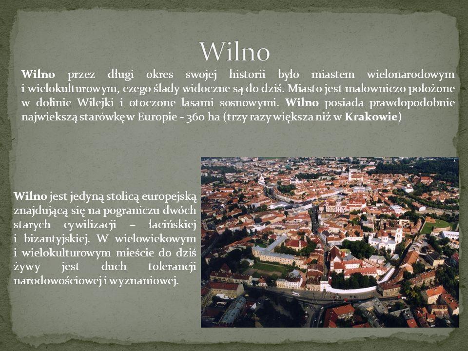 Wilno przez długi okres swojej historii było miastem wielonarodowym i wielokulturowym, czego ślady widoczne są do dziś. Miasto jest malowniczo położon