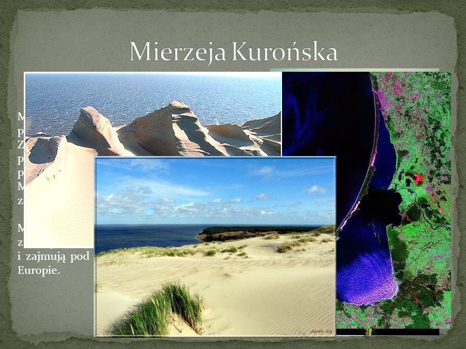 Mierzeja Kurońska jest charakterystycznym pasem lądu, oddzielającym Morze Bałtyckie od Zalewu Kurońskiego. Z satelitarnej perspektywy przypomina ona n