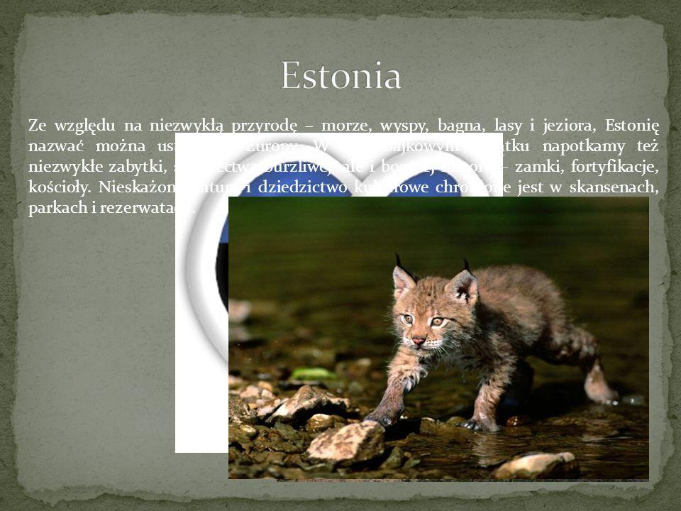 Ze względu na niezwykłą przyrodę – morze, wyspy, bagna, lasy i jeziora, Estonię nazwać można ustroniem Europy. W tym bajkowym zakątku napotkamy też ni