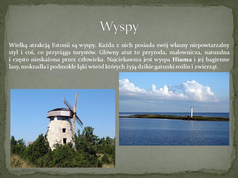 Wielką atrakcją Estonii są wyspy. Każda z nich posiada swój własny niepowtarzalny styl i coś, co przyciąga turystów. Główny atut to przyroda, malownic