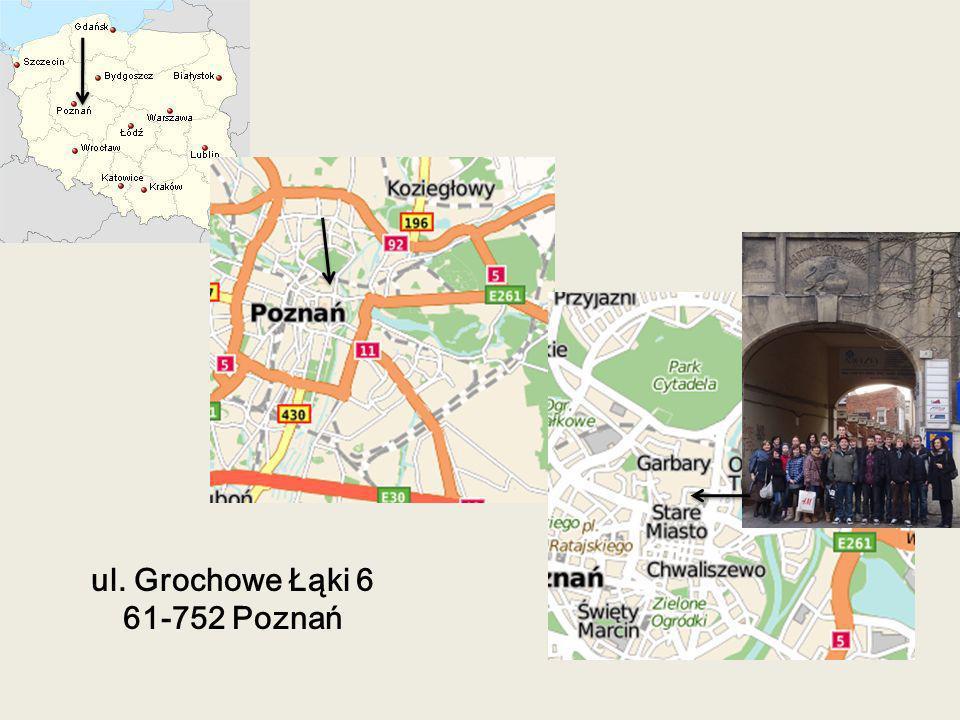 ul. Grochowe Łąki 6 61-752 Poznań