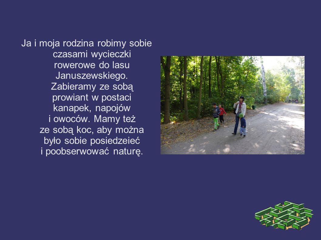 Ja i moja rodzina robimy sobie czasami wycieczki rowerowe do lasu Januszewskiego. Zabieramy ze sobą prowiant w postaci kanapek, napojów i owoców. Mamy
