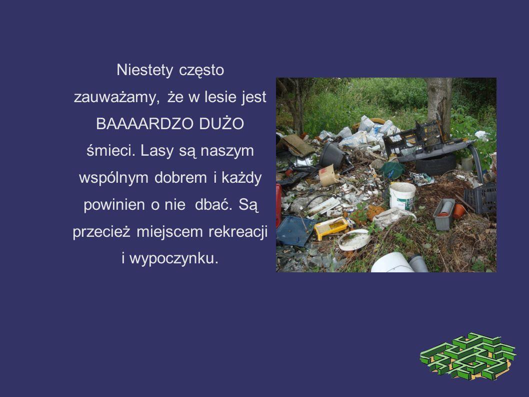 Niestety często zauważamy, że w lesie jest BAAAARDZO DUŻO śmieci. Lasy są naszym wspólnym dobrem i każdy powinien o nie dbać. Są przecież miejscem rek