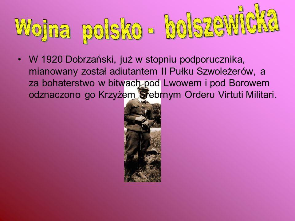 W 1920 Dobrzański, już w stopniu podporucznika, mianowany został adiutantem II Pułku Szwoleżerów, a za bohaterstwo w bitwach pod Lwowem i pod Borowem odznaczono go Krzyżem Srebrnym Orderu Virtuti Militari.