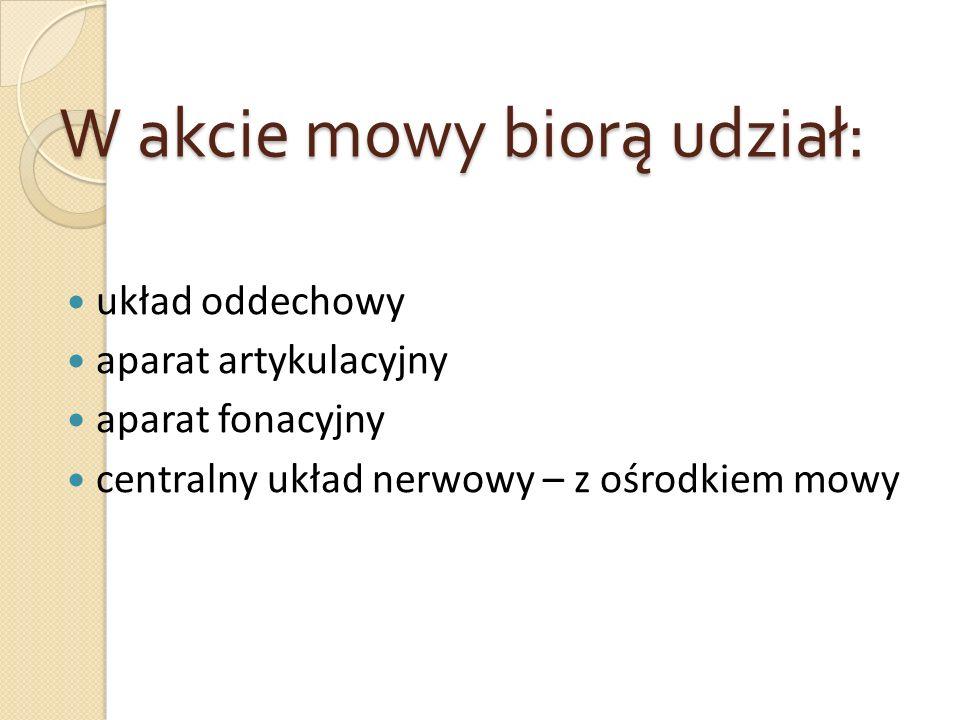 W akcie mowy biorą udział: układ oddechowy aparat artykulacyjny aparat fonacyjny centralny układ nerwowy – z ośrodkiem mowy