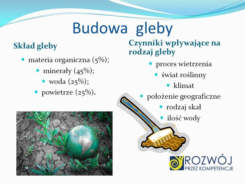 Budowa gleby Skład gleby Czynniki wpływające na rodzaj gleby materia organiczna (5%); minerały (45%); woda (25%); powietrze (25%). proces wietrzenia ś