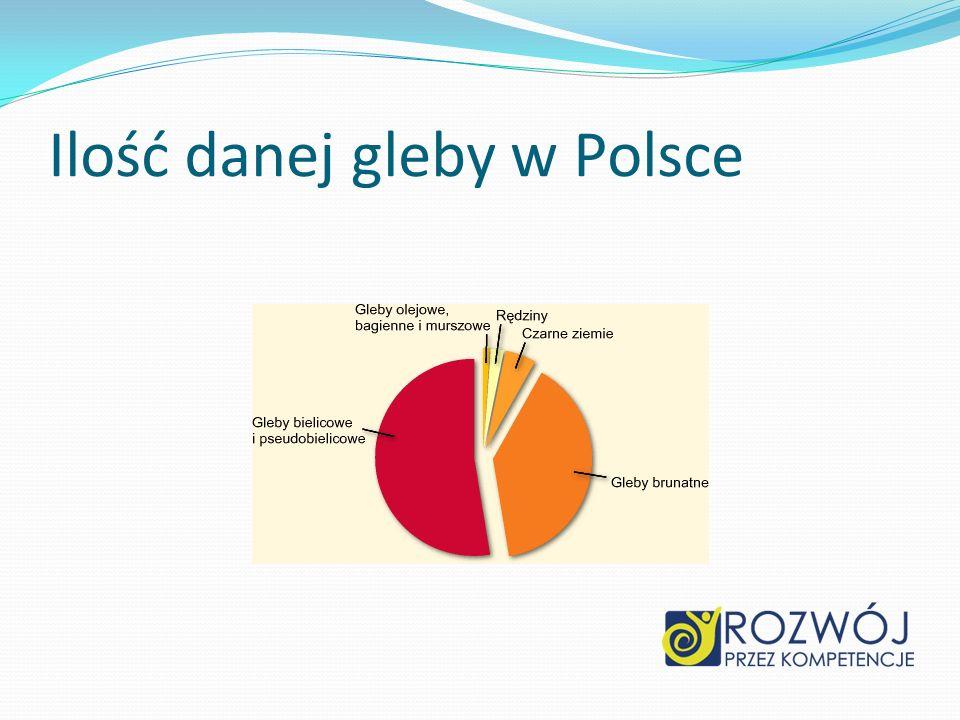 Ilość danej gleby w Polsce