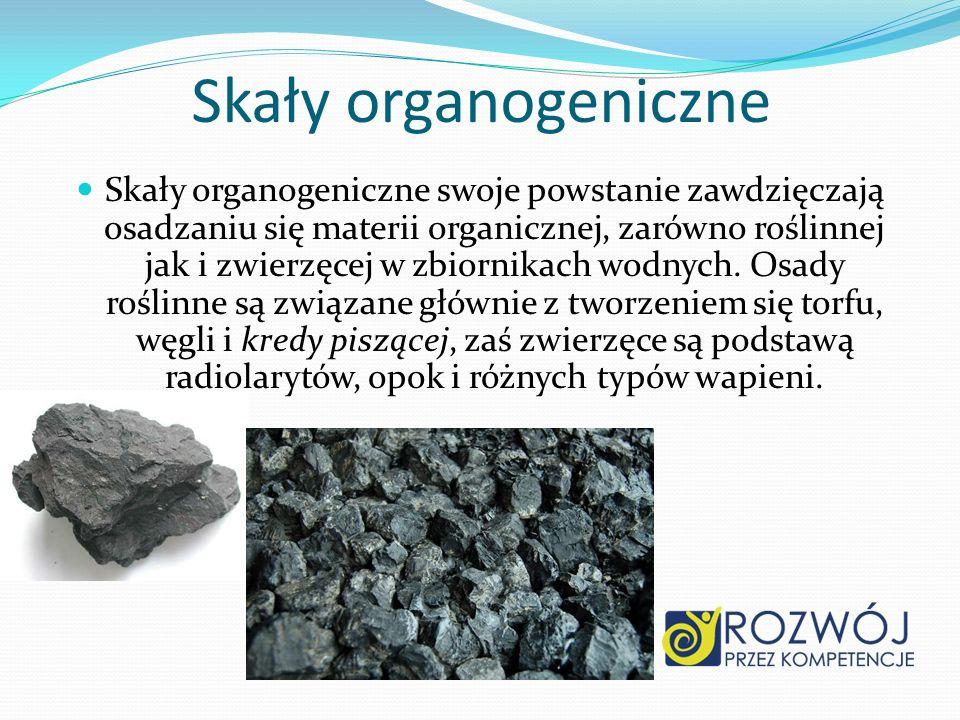 Skały organogeniczne Skały organogeniczne swoje powstanie zawdzięczają osadzaniu się materii organicznej, zarówno roślinnej jak i zwierzęcej w zbiorni