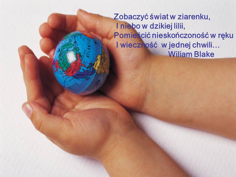Bibliografia: Wielka Interaktywna Encyklopedia Multimedialna WIEM - edycja 2004 r. Multimedialna Encyklopedia Powszechna - edycja 2004 r. Fizyka - lek