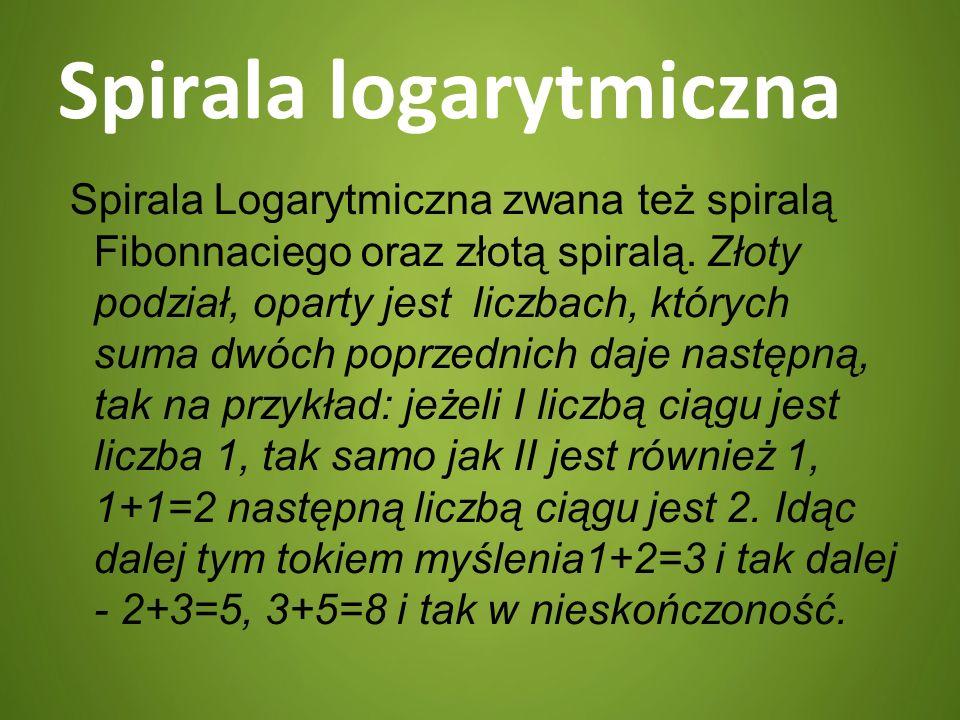 Spirala logarytmiczna Spirala Logarytmiczna zwana też spiralą Fibonnaciego oraz złotą spiralą. Złoty podział, oparty jest liczbach, których suma dwóch