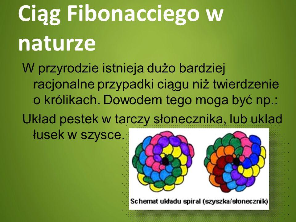 Ciąg Fibonacciego w naturze W przyrodzie istnieja dużo bardziej racjonalne przypadki ciągu niż twierdzenie o królikach. Dowodem tego moga być np.: Ukł