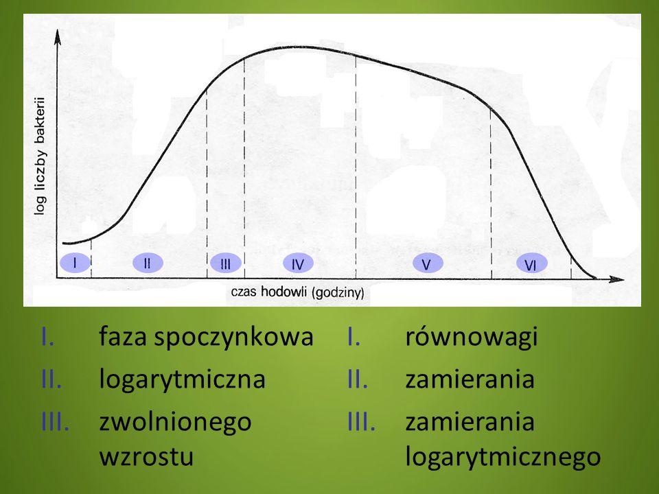 I.faza spoczynkowa II.logarytmiczna III.zwolnionego wzrostu I.równowagi II.zamierania III.zamierania logarytmicznego