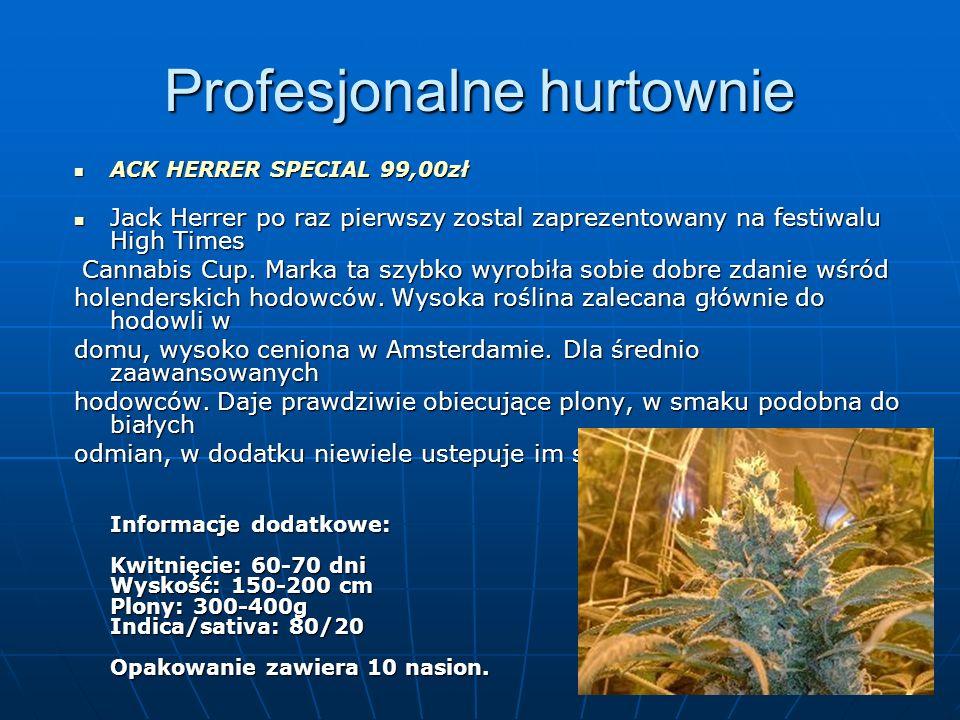 Profesjonalne hurtownie ACK HERRER SPECIAL 99,00zł ACK HERRER SPECIAL 99,00zł Jack Herrer po raz pierwszy zostal zaprezentowany na festiwalu High Time