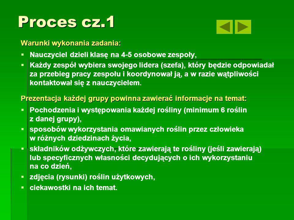 Proces cz.1 Warunki wykonania zadania: Nauczyciel dzieli klasę na 4-5 osobowe zespoły, Każdy zespół wybiera swojego lidera (szefa), który będzie odpow