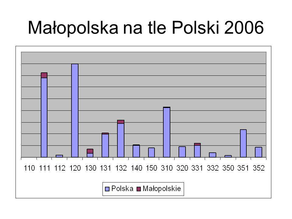 Małopolska na tle Polski 2006