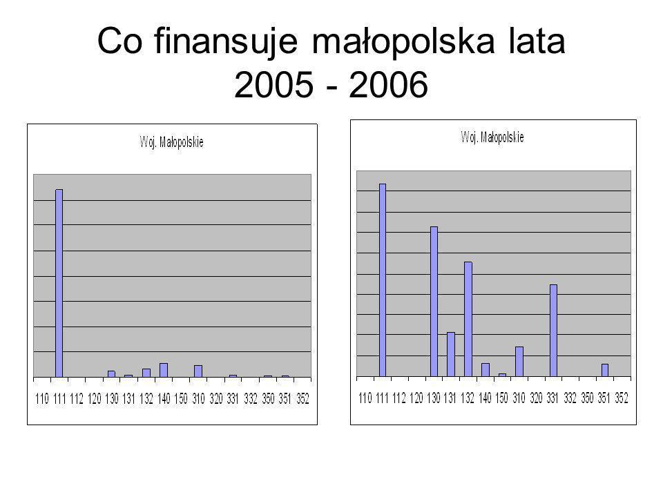 Co finansuje małopolska lata 2005 - 2006