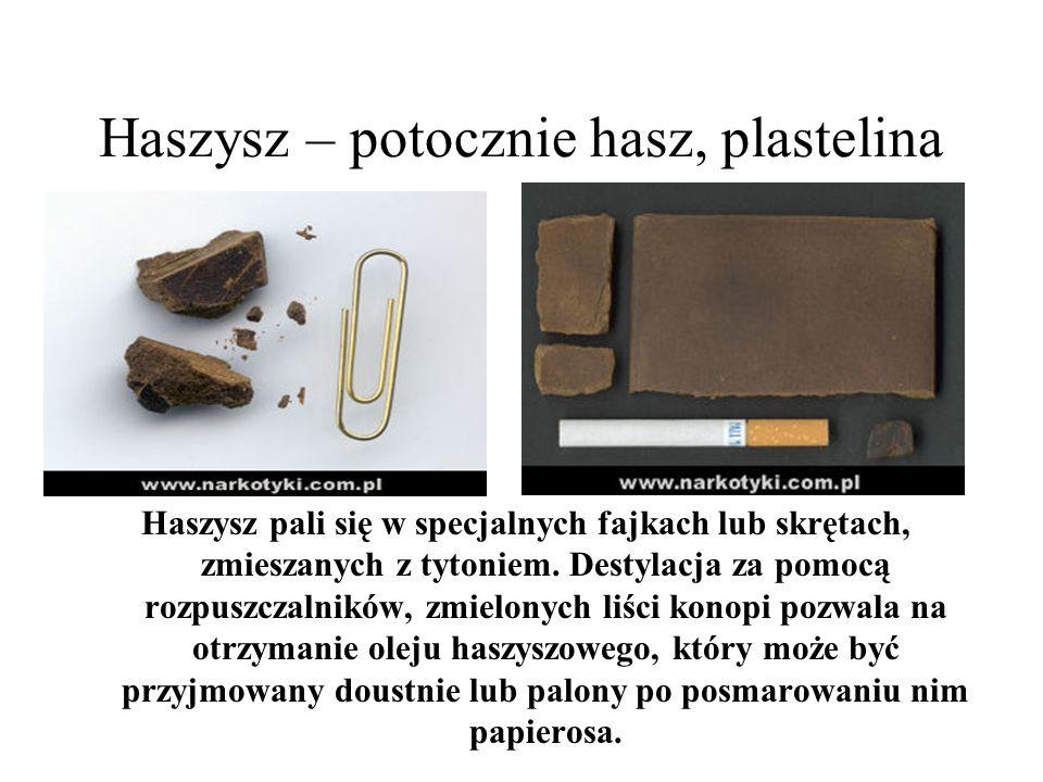 Haszysz – potocznie hasz, plastelina Haszysz pali się w specjalnych fajkach lub skrętach, zmieszanych z tytoniem. Destylacja za pomocą rozpuszczalnikó