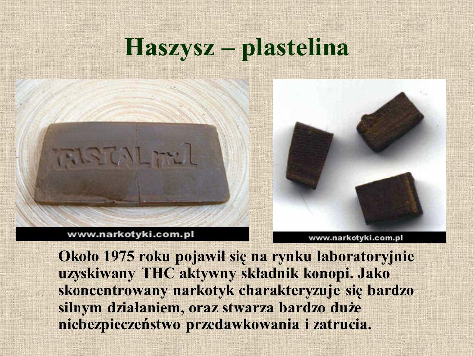 Haszysz – plastelina Około 1975 roku pojawił się na rynku laboratoryjnie uzyskiwany THC aktywny składnik konopi. Jako skoncentrowany narkotyk charakte