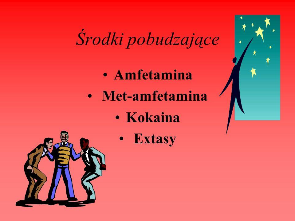 Środki pobudzające Amfetamina Met-amfetamina Kokaina Extasy