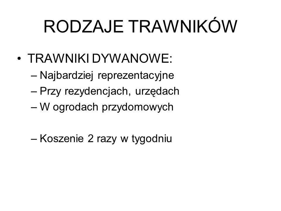 TRAWY Rośliny zielne jednoliścienne Gatunki wieloletnie i jednoroczne W Polsce występuje ok.