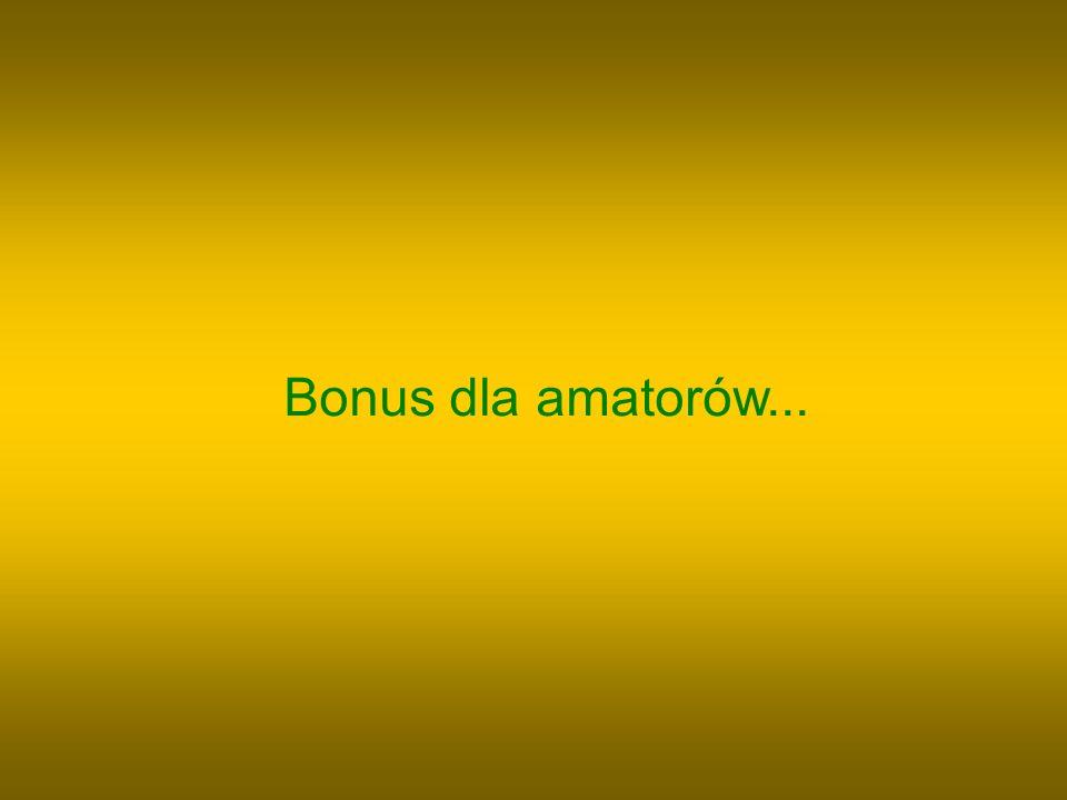 Bonus dla amatorów...