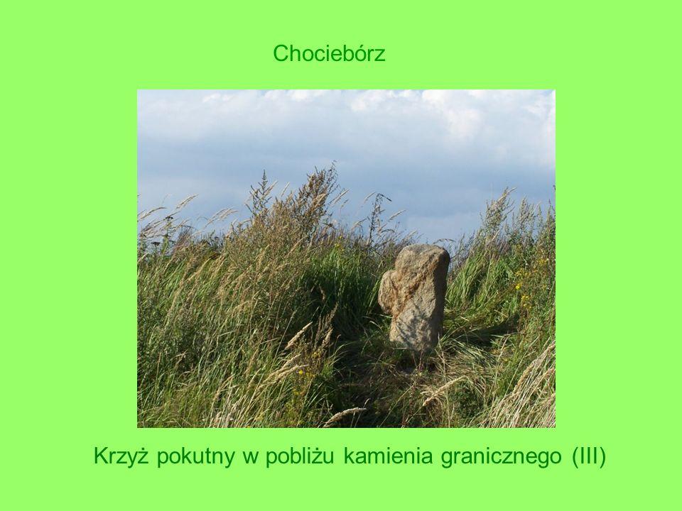Krzyż pokutny w pobliżu kamienia granicznego (III) Chociebórz