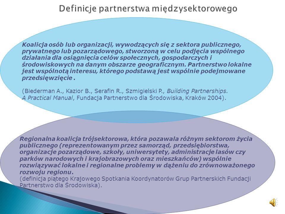 Koalicja osób lub organizacji, wywodzących się z sektora publicznego, prywatnego lub pozarządowego, stworzoną w celu podjęcia wspólnego działania dla osiągnięcia celów społecznych, gospodarczych i środowiskowych na danym obszarze geograficznym.