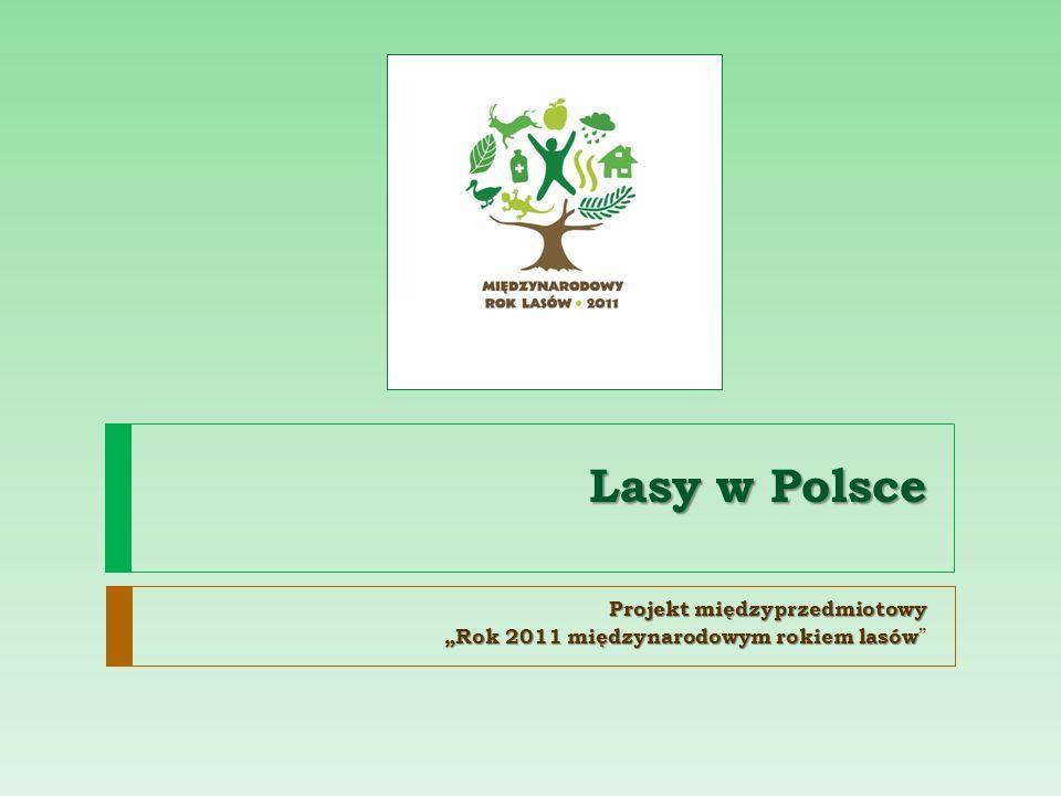 Lasy w Polsce Projekt międzyprzedmiotowy Rok 2011 międzynarodowym rokiem lasów Rok 2011 międzynarodowym rokiem lasów