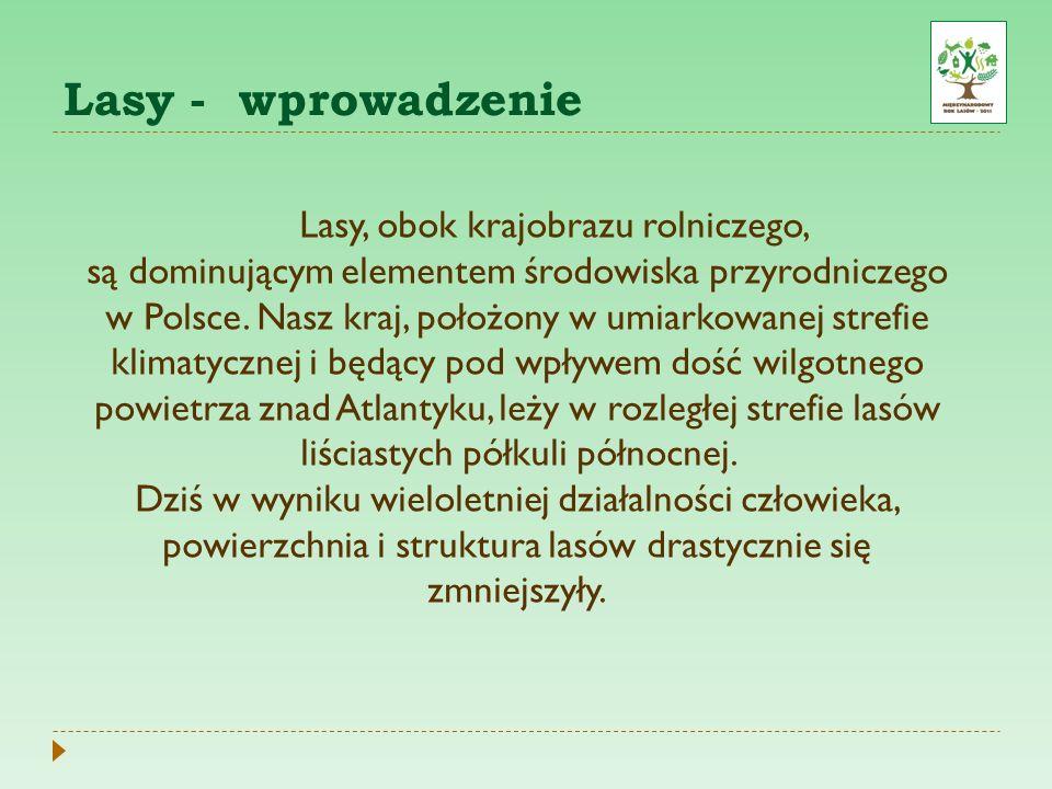 Lasy - wprowadzenie Lasy, obok krajobrazu rolniczego, są dominującym elementem środowiska przyrodniczego w Polsce. Nasz kraj, położony w umiarkowanej