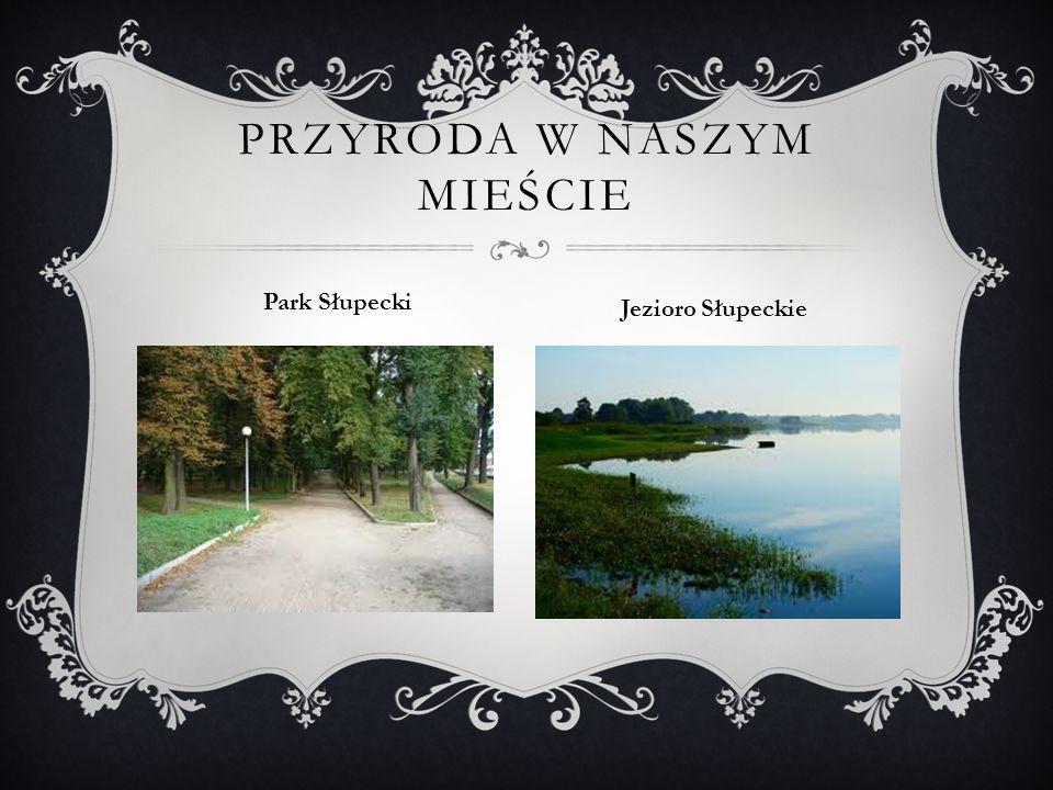 PRZYRODA W NASZYM MIEŚCIE Park Słupecki Jezioro Słupeckie