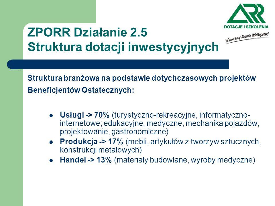 ZPORR Działanie 2.5 Struktura dotacji inwestycyjnych Struktura branżowa na podstawie dotychczasowych projektów Beneficjentów Ostatecznych: Usługi -> 7