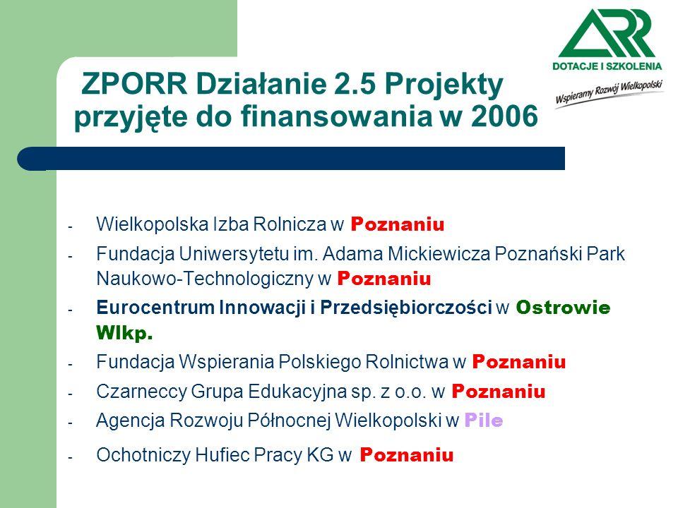 ZPORR Działanie 2.5 Główne wskaźniki produktu Liczba BO objęta wsparciem: plan 2005/2006/razem wyk.